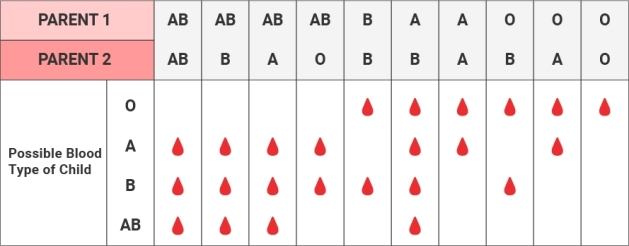 blood-types-chart.jpg.img